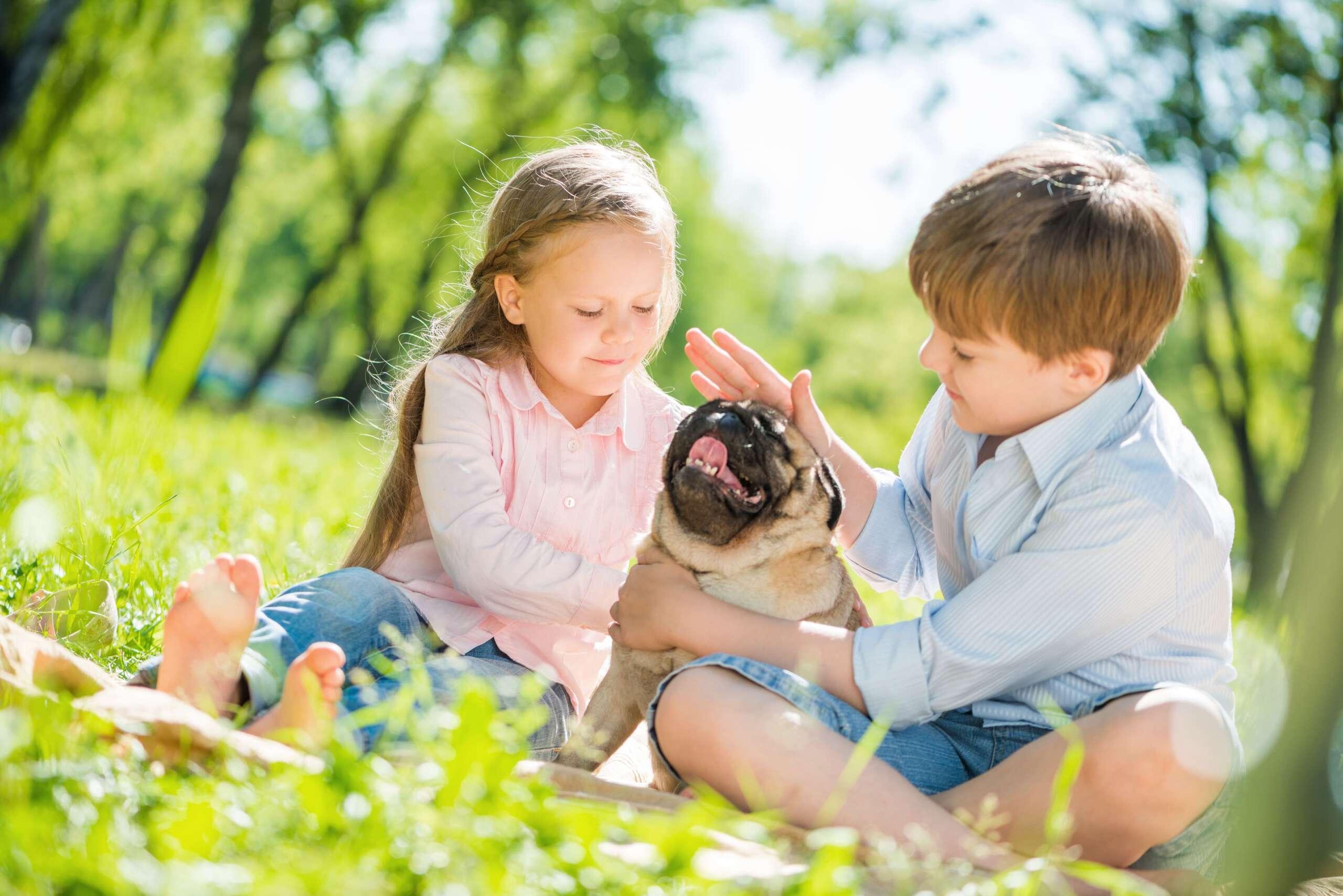 chłopiec i dziewczynka bawią się z psem